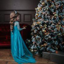 Princeses Elzas greznā garā kleita